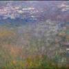 La imagen seleccionada corresponde a una de los nenúfares de Monet que trasmite una paz muy especial